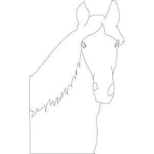 Horse 2 coloring page