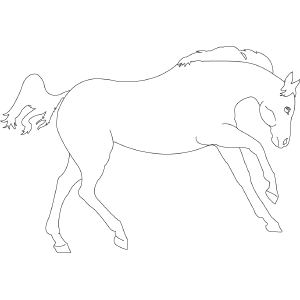 Horse 3 coloring page